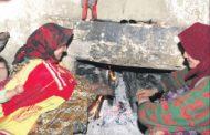 حطب التدفئة  يقض مضجع سكان المناطق الجبلية
