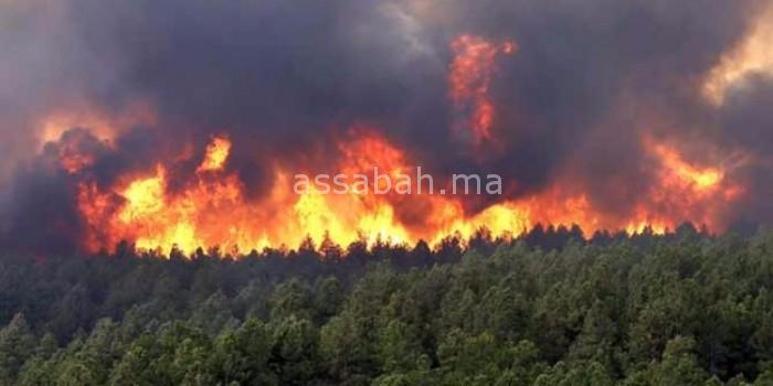 حريق يجهز على 150 هكتارا بتاوريرت وسكان المنطقة ساهموا في إخماذه