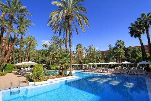 مجموعة فنادق معروفة في مراكش تنخرط في الحفاظ على المناخ والبيئة بمناسبة