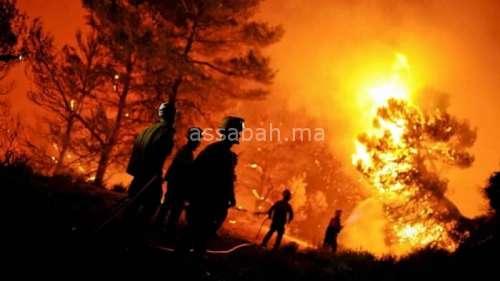الأراضي الفلسطينية المحتلة تحترق ... إسرائيل تطلب دعم العالم لإطفاء حرائق الغابات