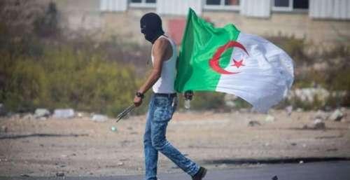 الاتحاد الأوربي قلق من وضعية حقوق الإنسان بالجزائر
