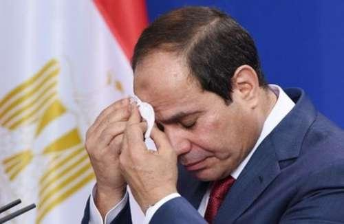 مصر تبدأ تحركاتها الرافضة لعودة المغرب لإفريقيا