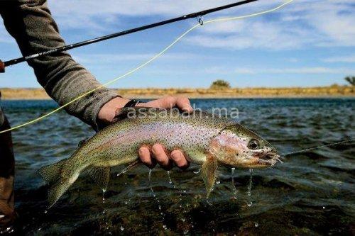 المغرب الأول إفريقيا في إنتاج الأسماك