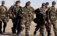 هل يجهز المغرب جنوده لحرب في الصحراء ؟