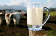 أخنوش: المغرب ينتج مليارين ونصف لتر من الحليب
