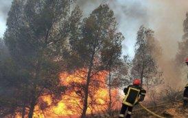 حريق يأتى على 22 هكتارا بالخميسات