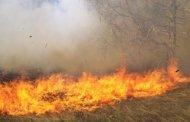 حريق جديد بالخميسات يأتى على 15 هكتارا