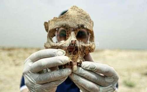 عظام بشرية تستنفر السلطات