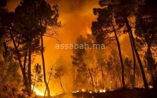 السيطرة على حريق بإحدى الضيعات الفلاحية بسلا