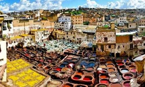 مغاربة العالم أسسوا 114 مقاولة بفاس في 2017
