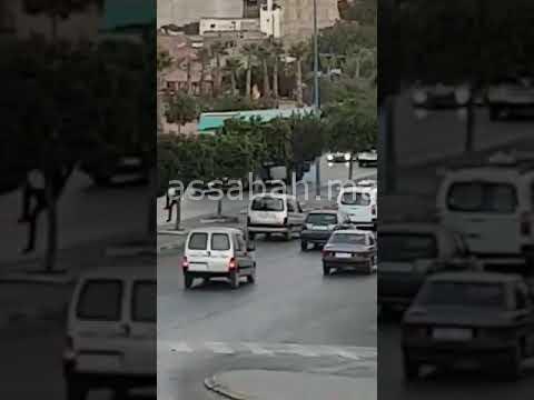 فيديو... لص يختار تسلق الأشجار للترصد بسائقي السيارات