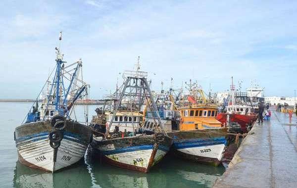 مهنيون: إضراب ربابنة الصيد تهور وإهمال