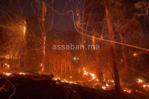 كاليفورنيا تكافح حريقا غابويا ضخما