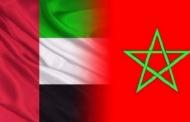 الإمارات تندد بالأنشطة الإرهابية لحزب الله والبوليساريو