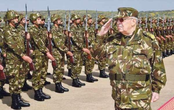رئيس أركان الجيش الجزائري يعلن عجز بوتفليقة عن أداء مهامه